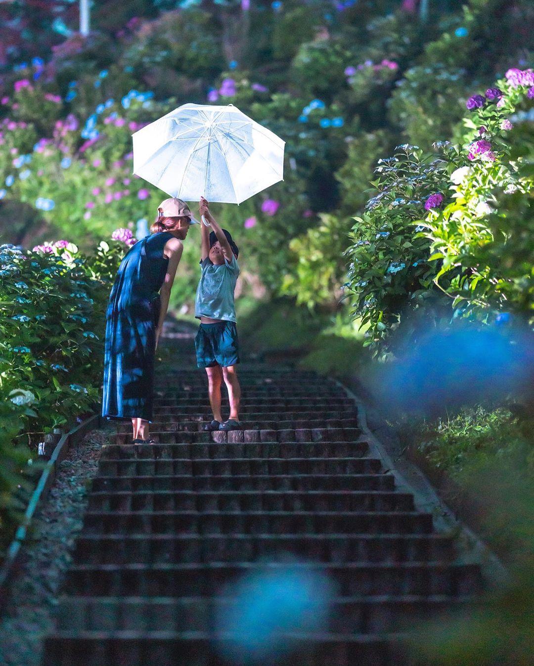 """Có một nước Nhật đẹp đến nao lòng qua ống kính của ông bố trẻ """"mê"""" chụp ảnh vợ và con trai, ai xem xong cũng """"tan chảy"""" - Ảnh 20."""