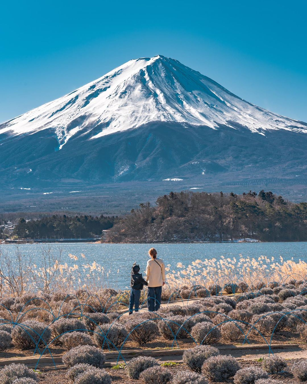"""Có một nước Nhật đẹp đến nao lòng qua ống kính của ông bố trẻ """"mê"""" chụp ảnh vợ và con trai, ai xem xong cũng """"tan chảy"""" - Ảnh 18."""