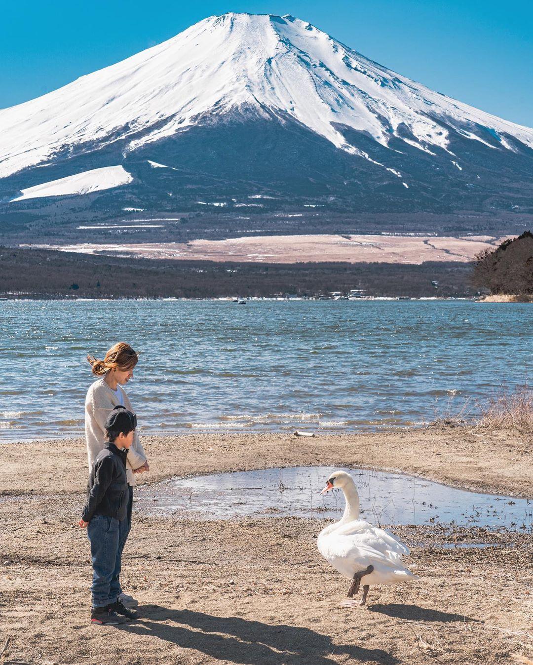 """Có một nước Nhật đẹp đến nao lòng qua ống kính của ông bố trẻ """"mê"""" chụp ảnh vợ và con trai, ai xem xong cũng """"tan chảy"""" - Ảnh 16."""