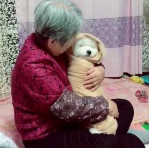 Gửi chó cưng đến cho bà ngoại chăm giúp, chàng trai khi đến thăm liền ngỡ ngàng với cảnh tượng trước mắt nhưng không cầm được nước mắt - Ảnh 1.