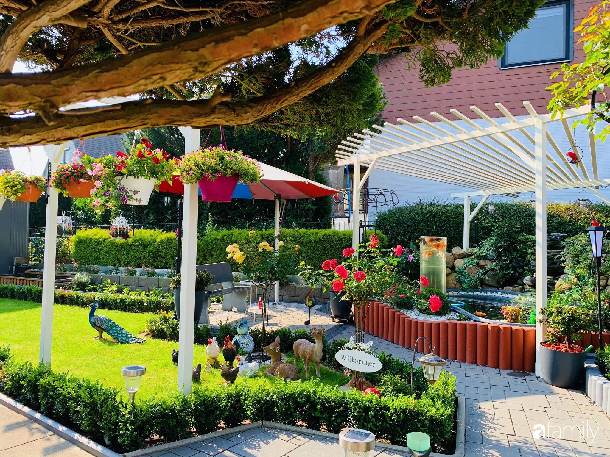 """Vườn hoa 500m² đẹp như cổ tích được tạo bởi tình yêu thiên nhiên của cặp vợ chồng dành cả """"thanh xuân"""" để trồng cây - Ảnh 1."""