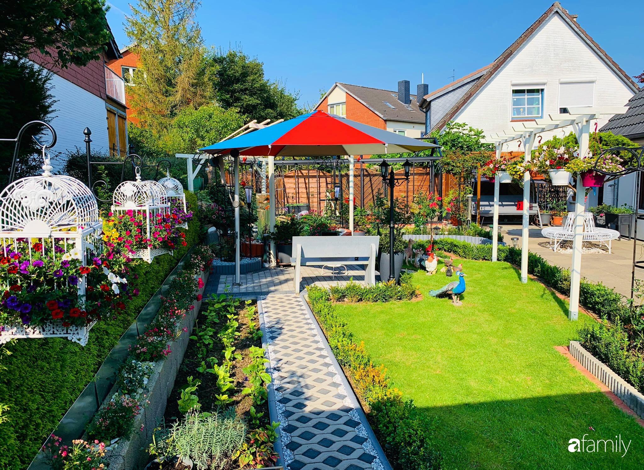"""Vườn hoa 500m² đẹp như cổ tích được tạo bởi tình yêu thiên nhiên của cặp vợ chồng dành cả """"thanh xuân"""" để trồng cây - Ảnh 13."""