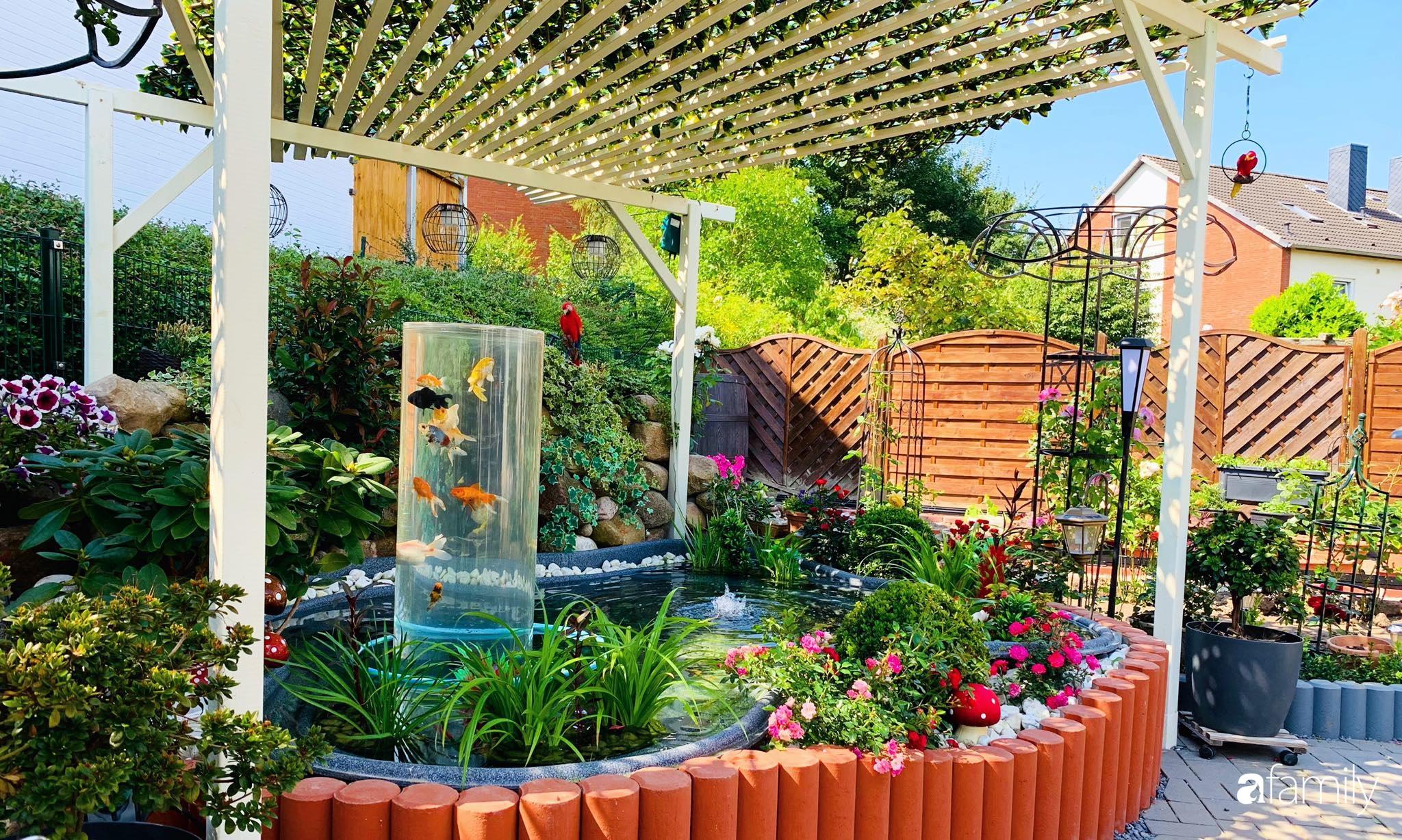 """Vườn hoa 500m² đẹp như cổ tích được tạo bởi tình yêu thiên nhiên của cặp vợ chồng dành cả """"thanh xuân"""" để trồng cây - Ảnh 4."""