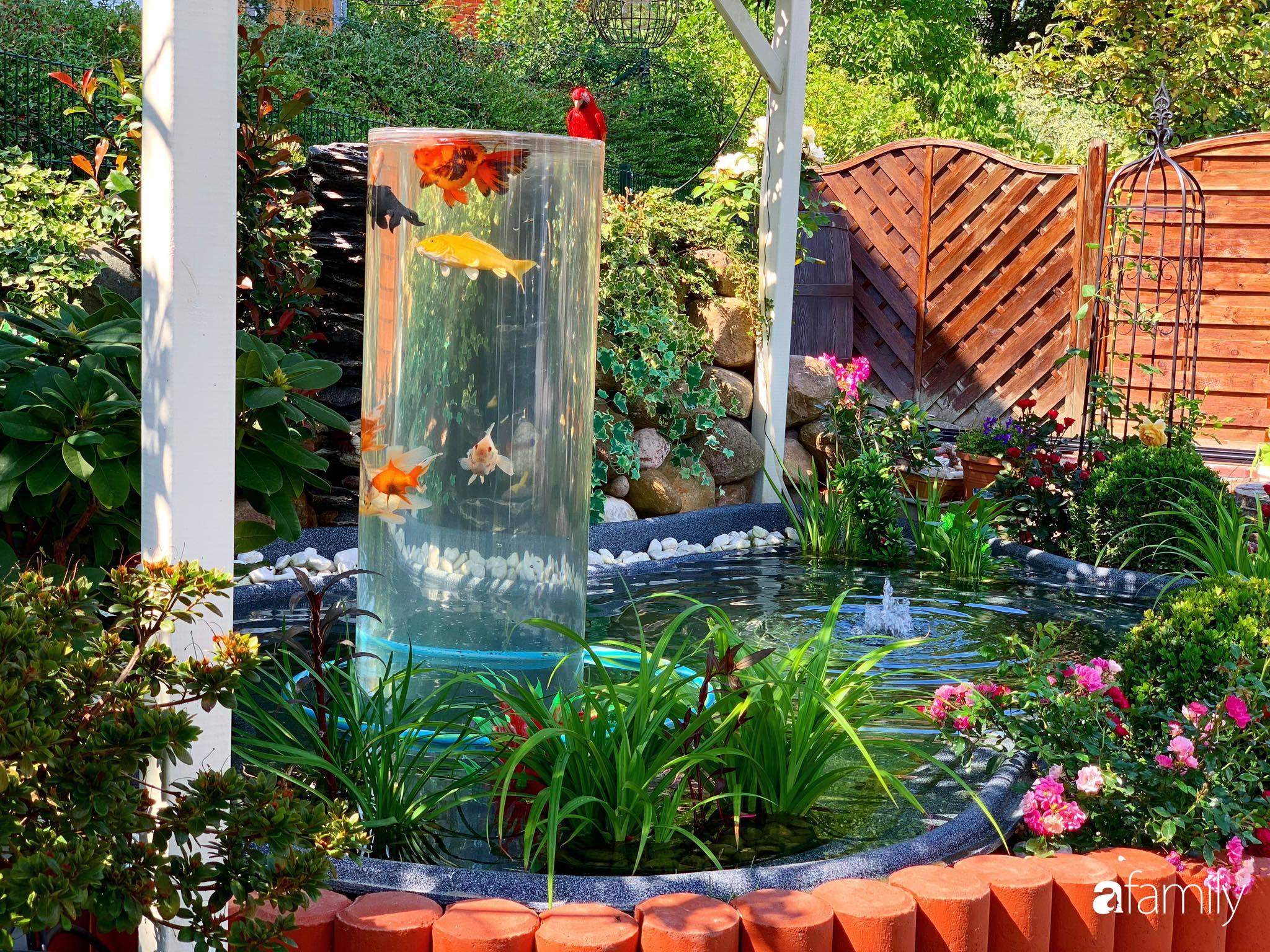 """Vườn hoa 500m² đẹp như cổ tích được tạo bởi tình yêu thiên nhiên của cặp vợ chồng dành cả """"thanh xuân"""" để trồng cây - Ảnh 5."""