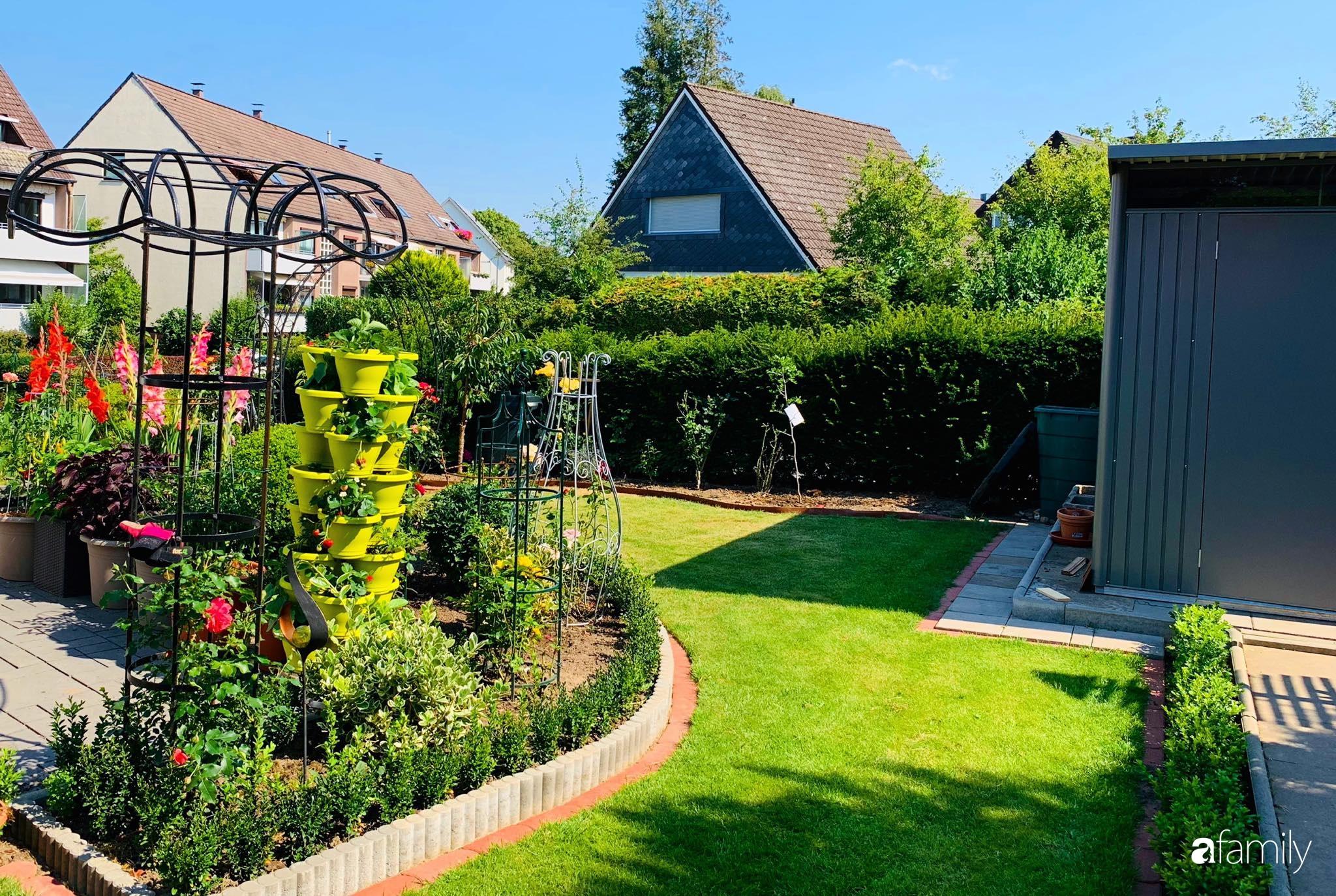 """Vườn hoa 500m² đẹp như cổ tích được tạo bởi tình yêu thiên nhiên của cặp vợ chồng dành cả """"thanh xuân"""" để trồng cây - Ảnh 7."""