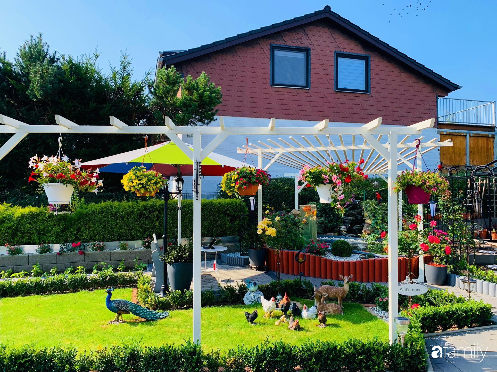 """Vườn hoa 500m² đẹp như cổ tích được tạo bởi tình yêu thiên nhiên của cặp vợ chồng dành cả """"thanh xuân"""" để trồng cây - Ảnh 8."""