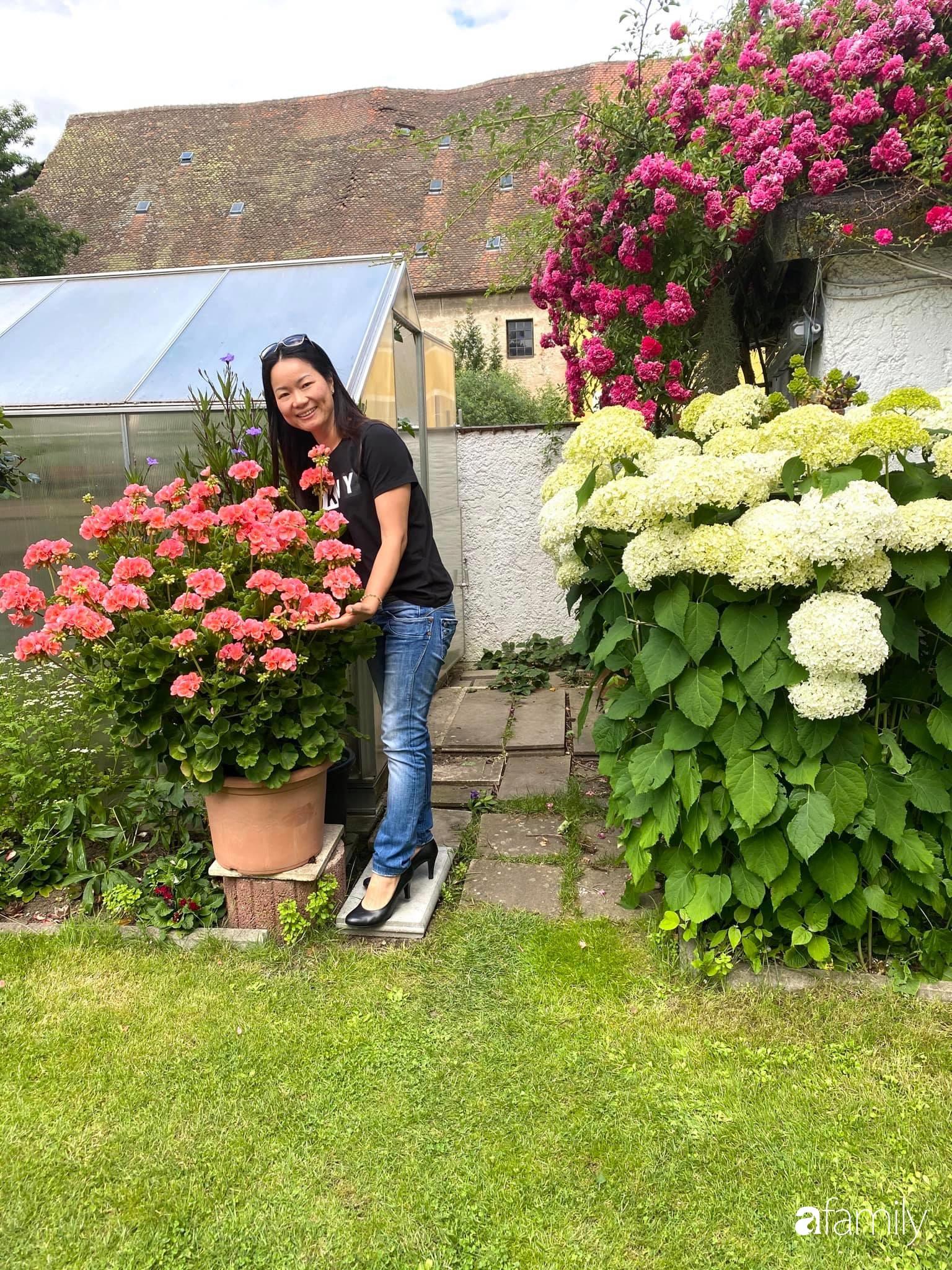 Khu vườn 200m² quanh năm xanh tươi với đủ loại rau quả sạch của mẹ Việt ở Đức - Ảnh 1.