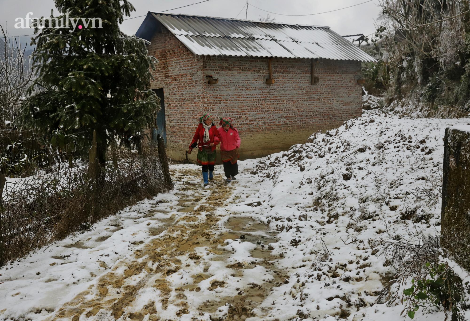 Sững sờ trước khung cảnh tuyết rơi phủ trắng đỉnh đồi Y Tý, du khách thích thú check in giữa trời trắng xóa - Ảnh 20.