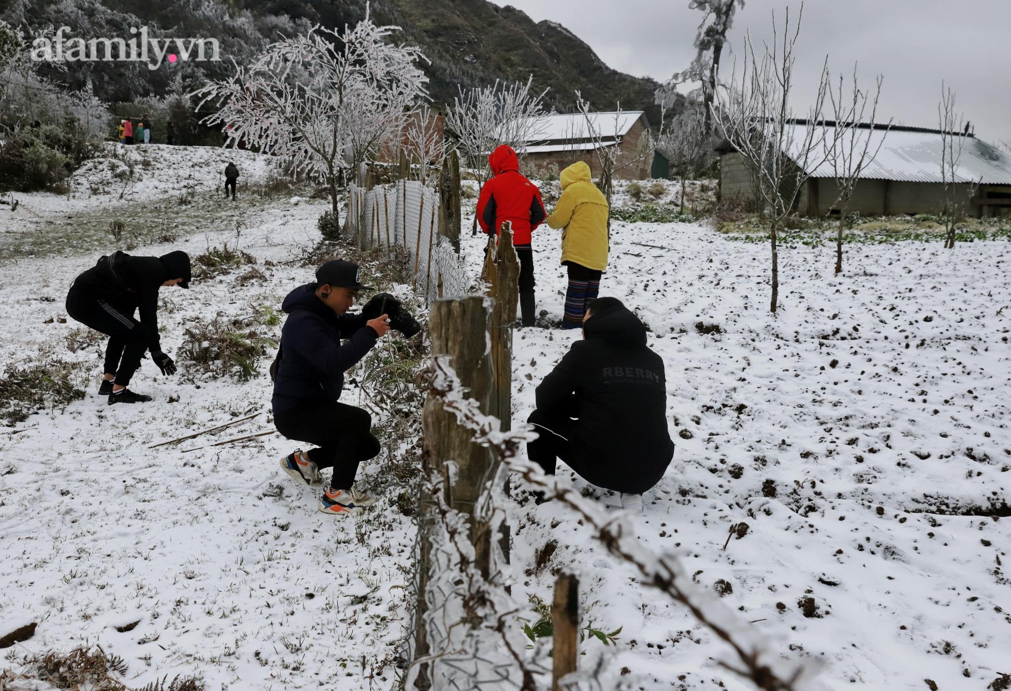 Sững sờ trước khung cảnh tuyết rơi phủ trắng đỉnh đồi Y Tý, du khách thích thú check in giữa trời trắng xóa - Ảnh 22.