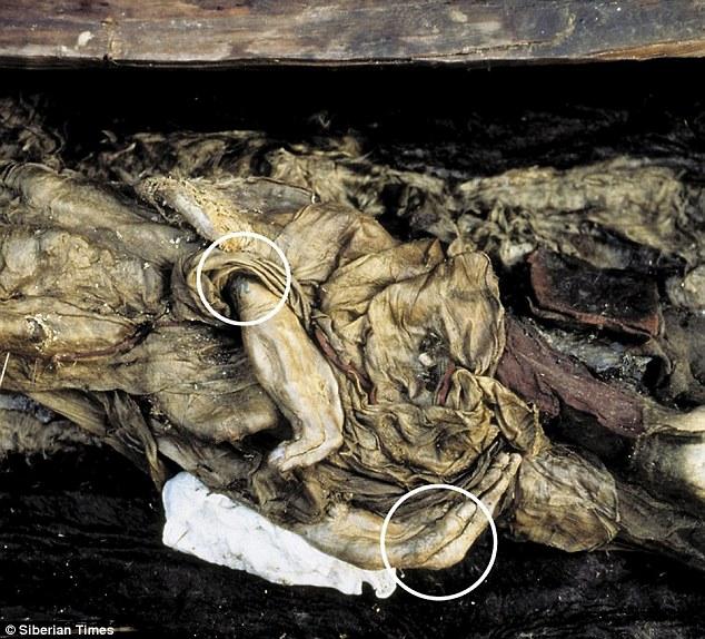 Xác ướp công chúa 2.500 tuổi có hình xăm điệu nghệ rất giống hiện đại khiến khoa học bối rối, người dân cương quyết không cho công khai ảnh lên truyền thông với lý do khó hiểu - Ảnh 5.