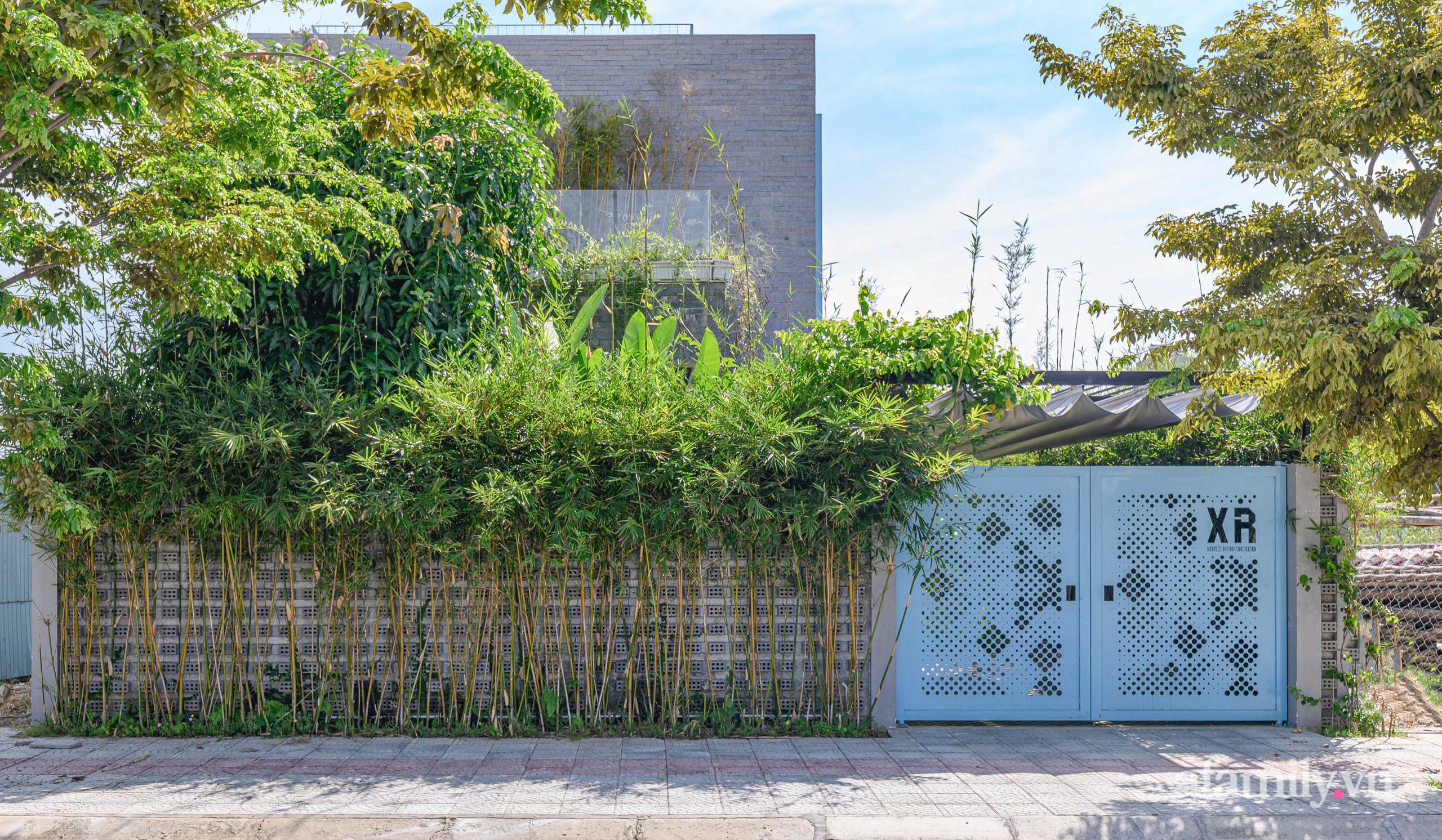 Ngôi nhà nhiều cây xanh và ánh sáng gói trọn bình yên của cặp vợ chồng kiến trúc sư ở Đà Nẵng - Ảnh 1.
