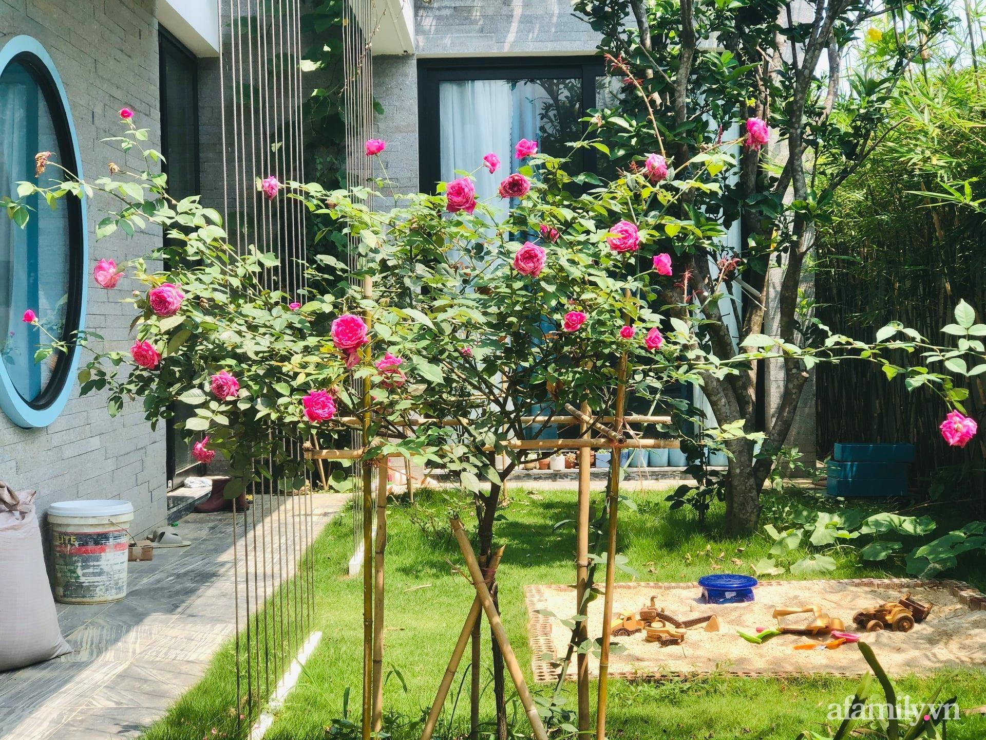 Ngôi nhà nhiều cây xanh và ánh sáng gói trọn bình yên của cặp vợ chồng kiến trúc sư ở Đà Nẵng - Ảnh 17.