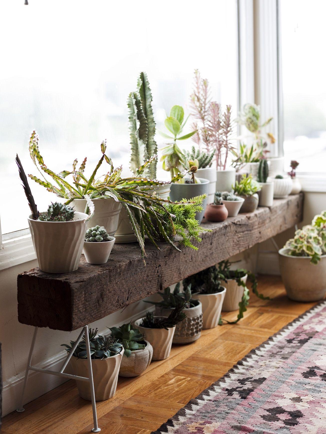 Ý tưởng điểm tô phòng khách cực xinh nhờ trang trí khung cửa sổ - Ảnh 2.
