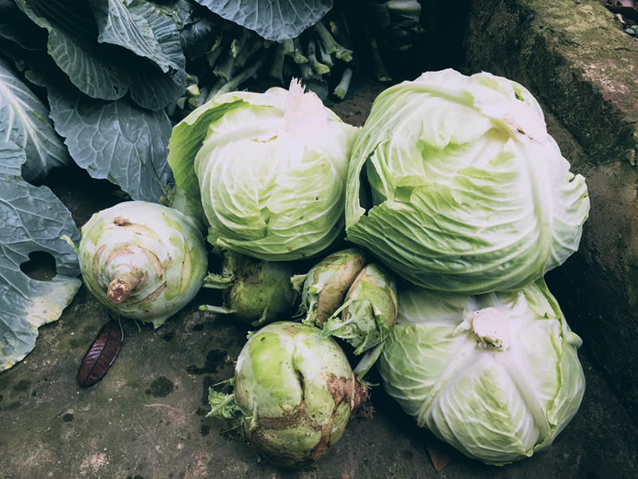 7 bí quyết chi tiêu mua thực phẩm Tết tiết kiệm, dù nhà cả huyện người cũng ăn Tết không quá 5 triệu đồng - Ảnh 2.