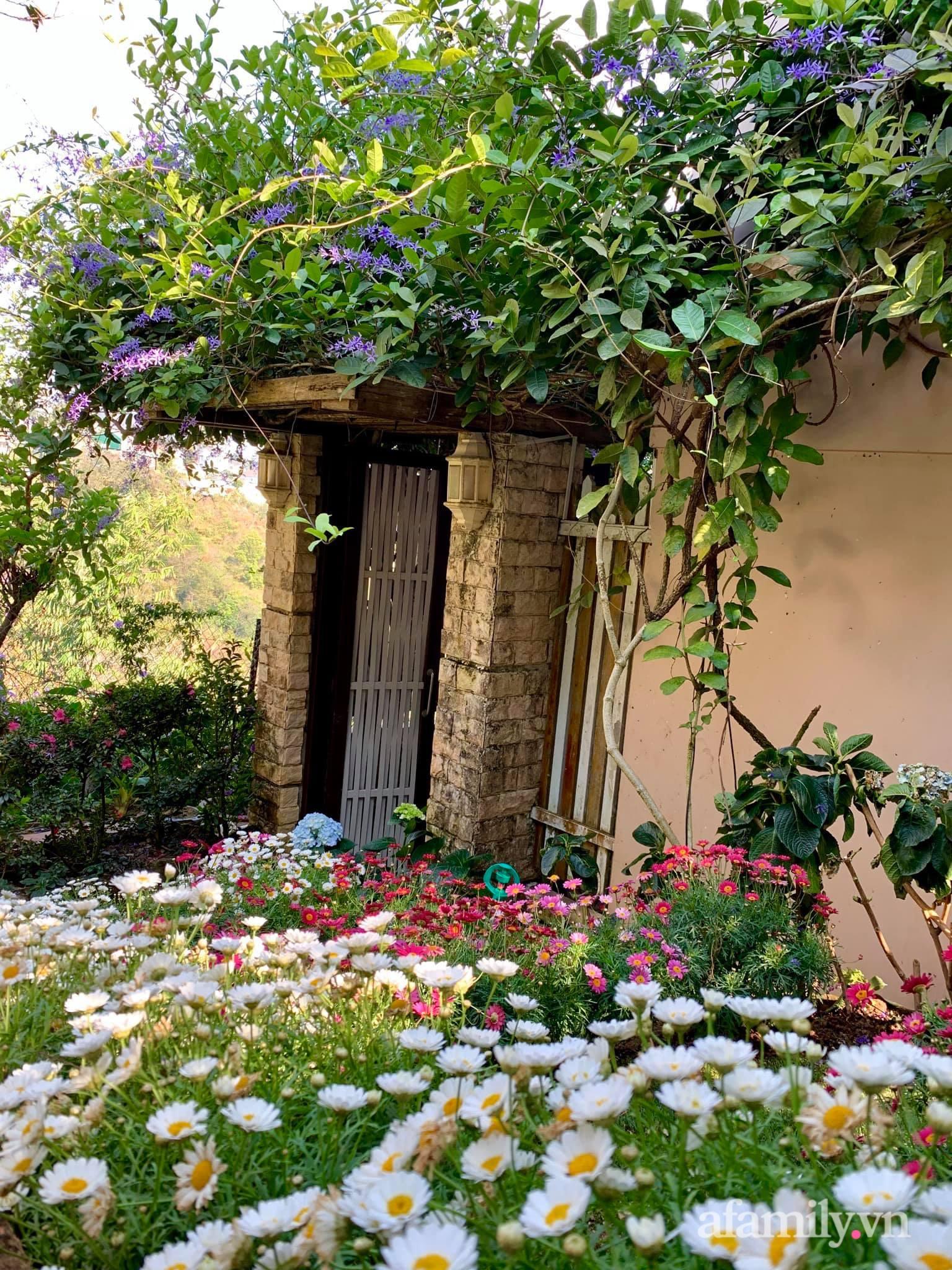 Ngôi nhà nhỏ yên bình sở hữu khu vườn đẹp như xứ sở thần tiên giữa lưng chừng đồi ở Đà Lạt - Ảnh 18.