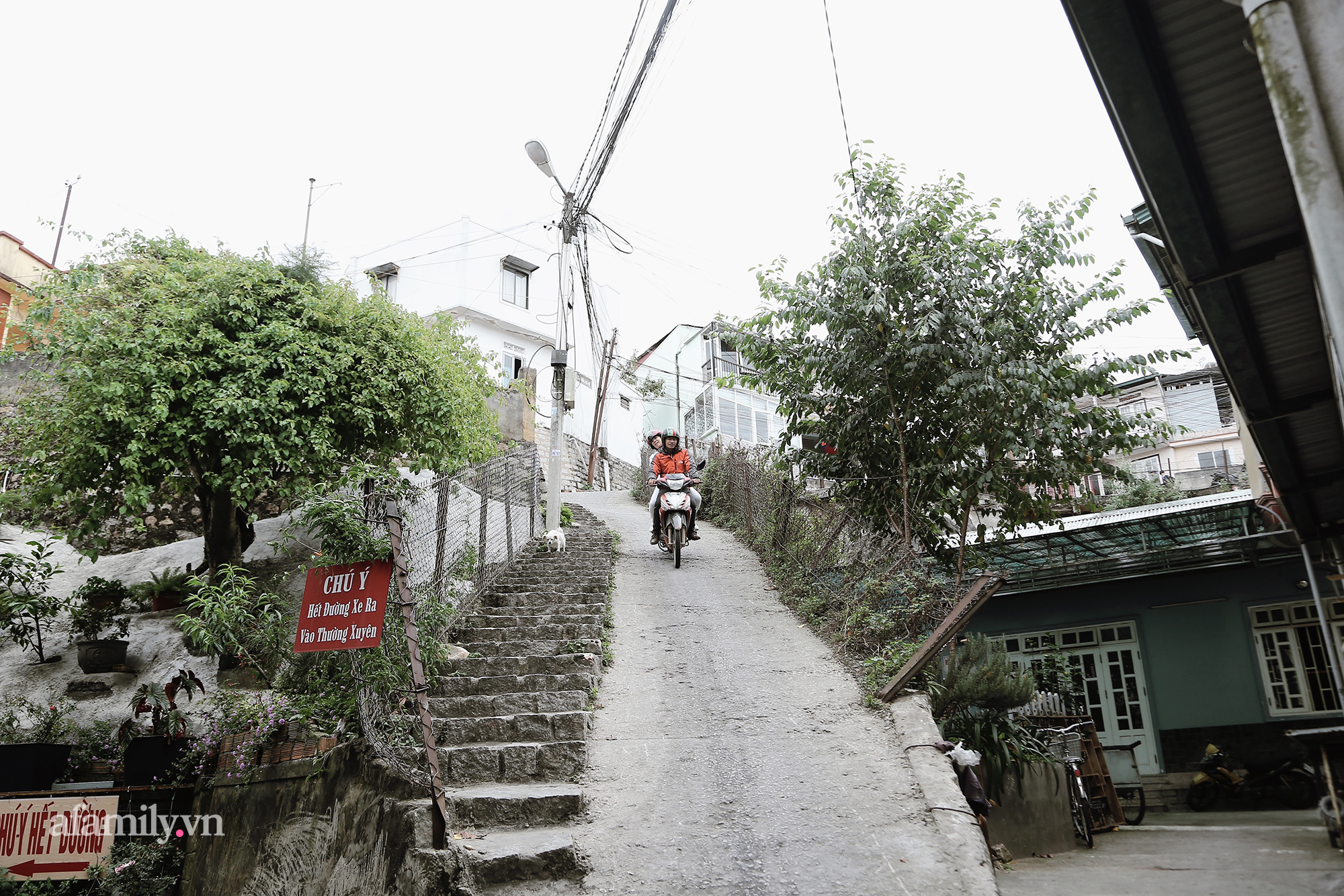 """Trải nghiệm thực tế với 1001 cảm xúc tại con dốc nổi tiếng nguy hiểm nhất tại Đà Lạt, té sấp mặt, """"la làng"""" vì sợ là hoàn toàn có thật! - Ảnh 14."""