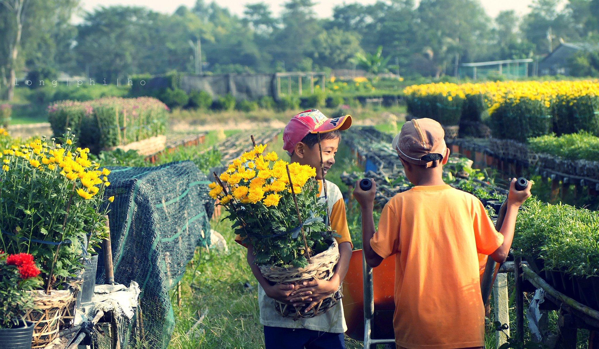 5 điều bạn cần phải biết để không bị lỗ vốn khi bán hoa ngày Tết - Ảnh 2.