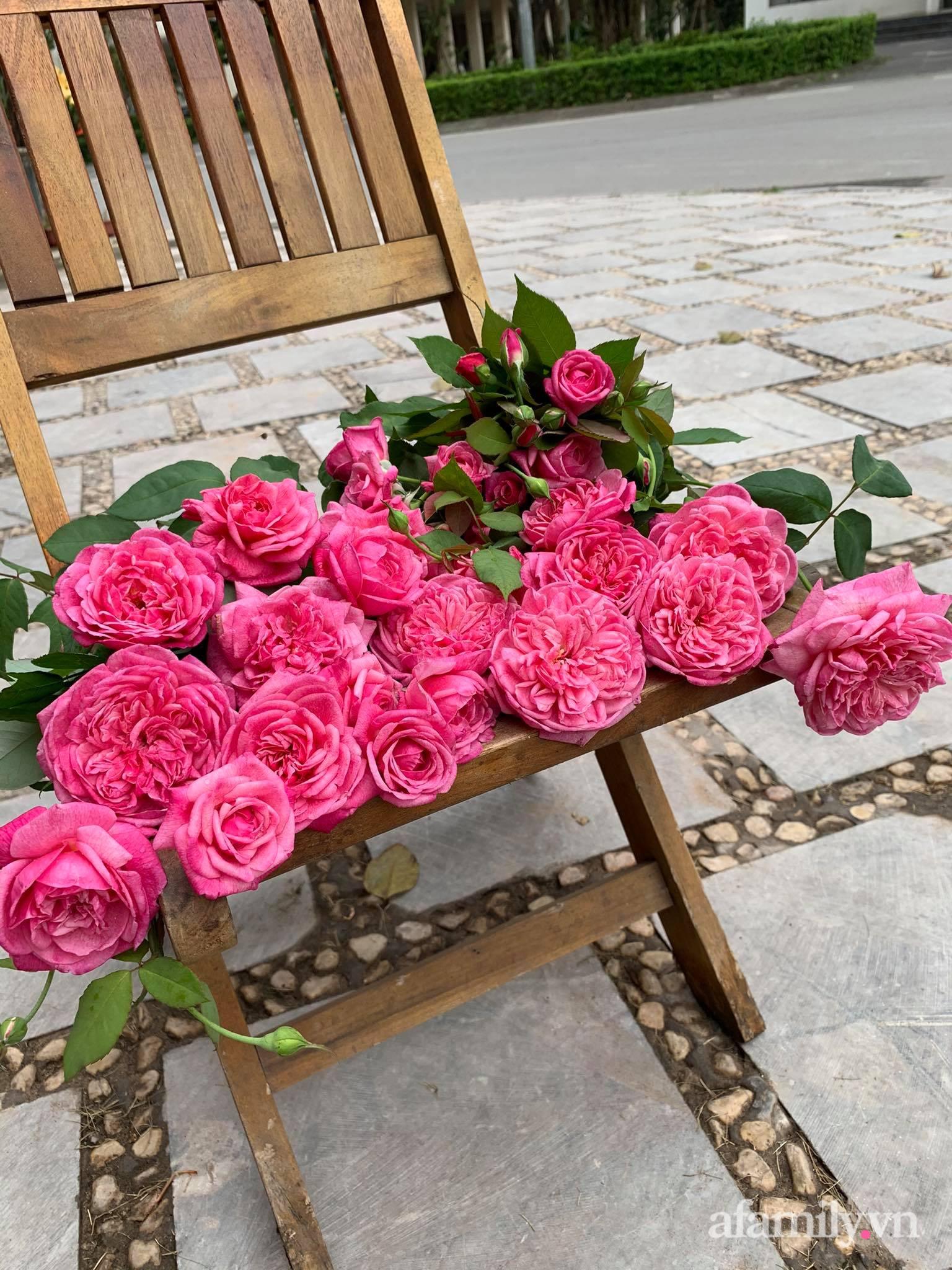 Ngôi nhà quanh năm rực rỡ sắc hương hoa hồng và đủ loại cây ăn quả ở Hà Nội - Ảnh 11.
