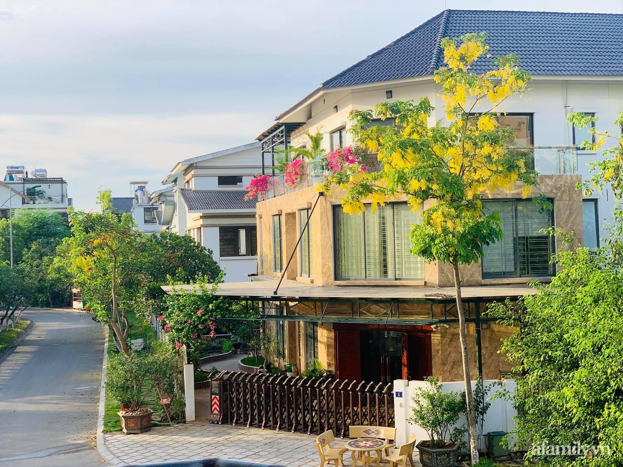 Ngôi nhà quanh năm rực rỡ sắc hương hoa hồng và đủ loại cây ăn quả ở Hà Nội - Ảnh 2.