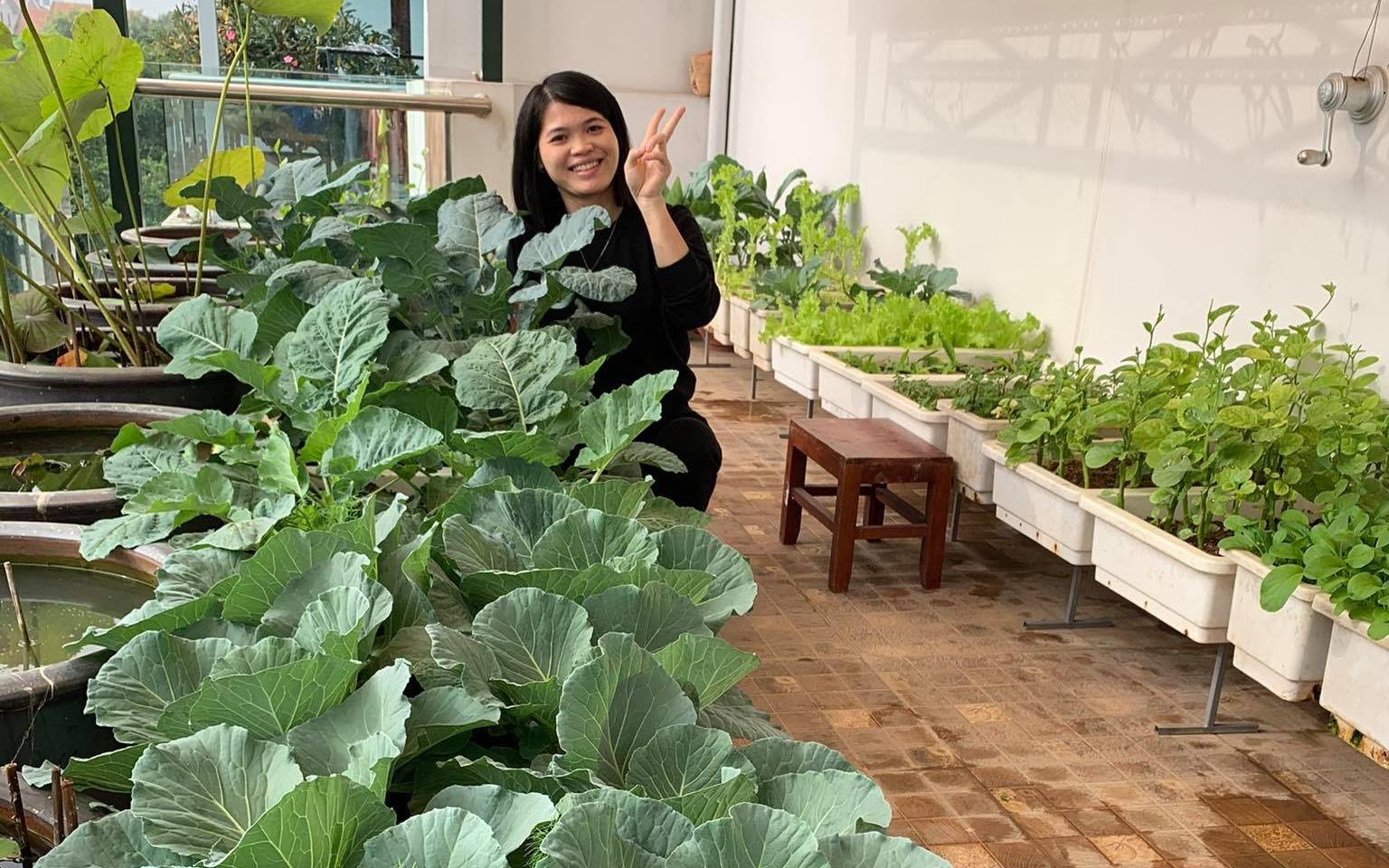 Ban công 20m² phủ kín rau và hoa rực rỡ của mẹ trẻ Hà Nội