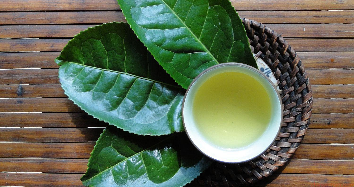 """Cộng đồng mạng phát sốt vì """"Sơn Tùng"""" và trà xanh, nhưng hỡi ôi xin đừng tẩy chay những món ngon lành từ trà xanh này! - Ảnh 1."""
