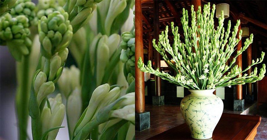 7 loại hoa cúng trên bàn thờ Tết vừa đẹp vừa hợp phong thủy và những kiêng kị khi chọn hoa - Ảnh 7.