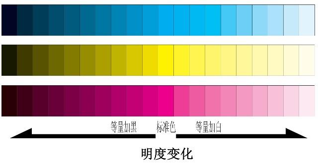 Tuyệt chiêu kết hợp màu sắc trang phục giúp bạn gầy đi trông thấy - Ảnh 2.
