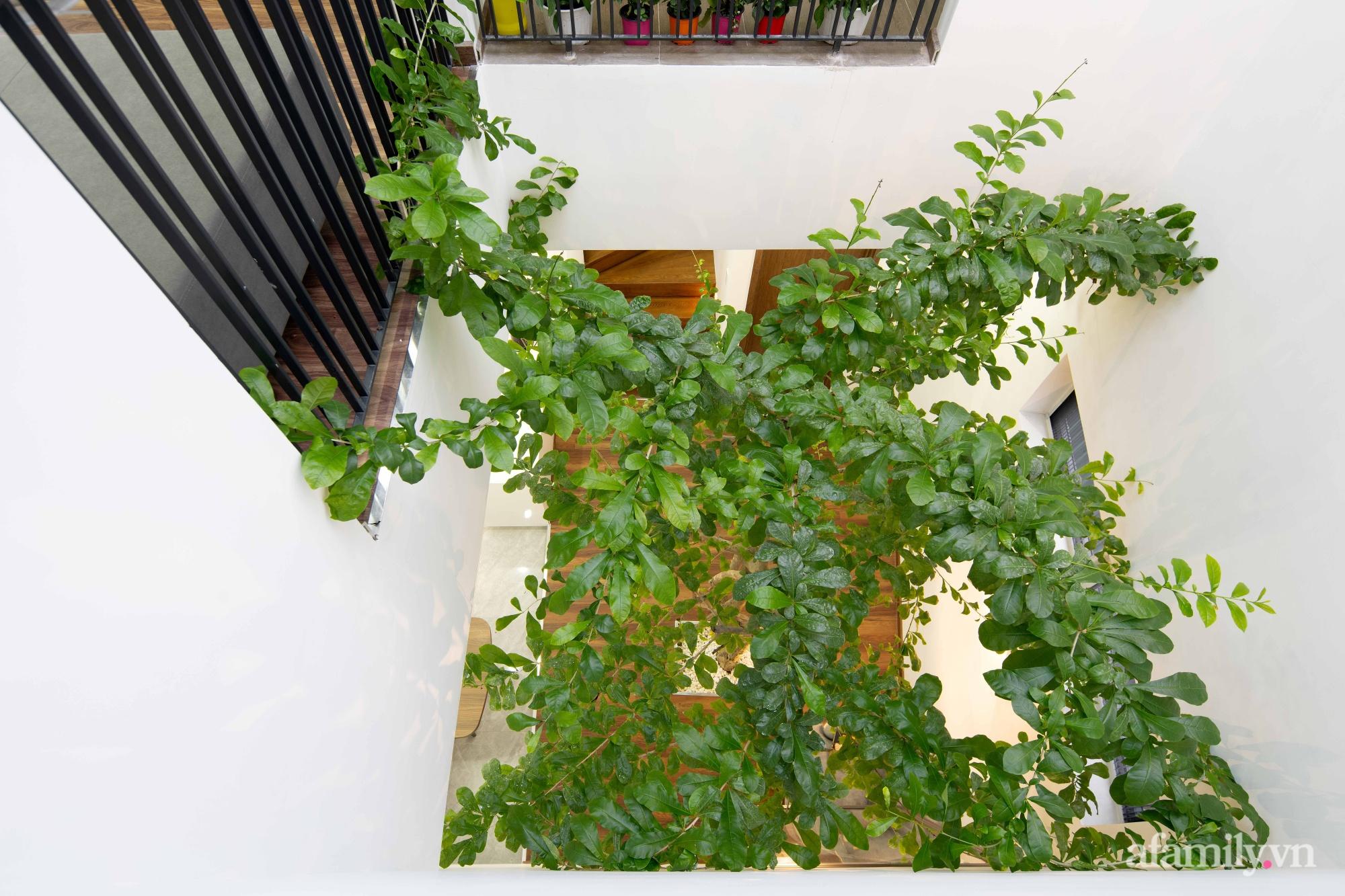 Nhà trong hẻm nhỏ vẫn ngập tràn ánh sáng, duyên dáng với nội thất tối giản ở Đà Nẵng - Ảnh 11.