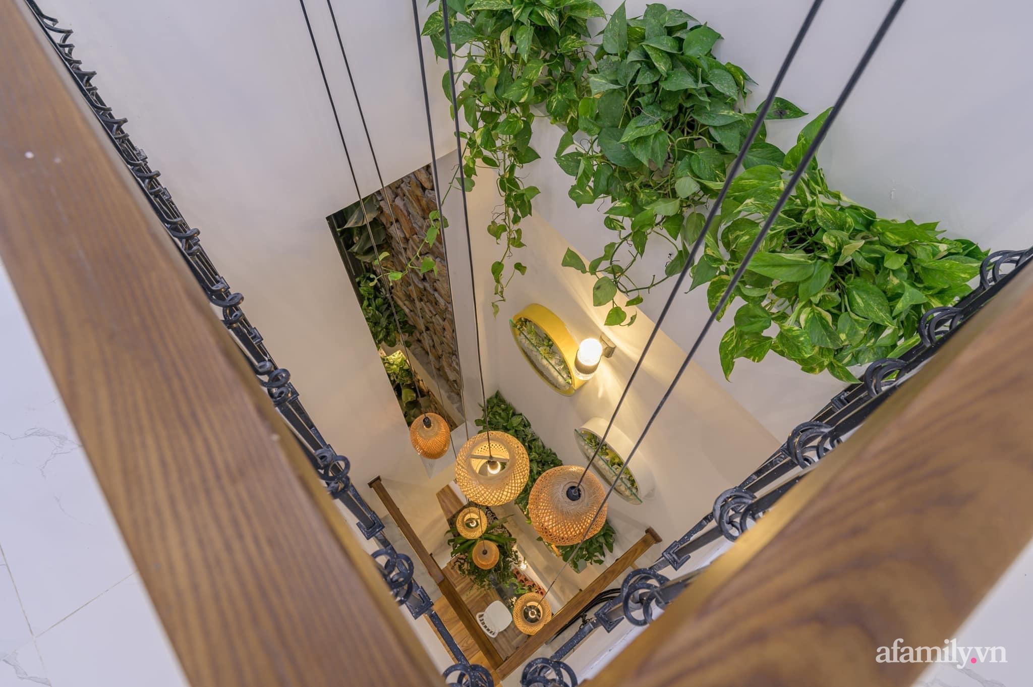 Nhà phố 4 tầng rộng 58m² đẹp an yên với giếng trời nhiều cây xanh và ánh nắng ngập tràn ở Đà Nẵng - Ảnh 5.