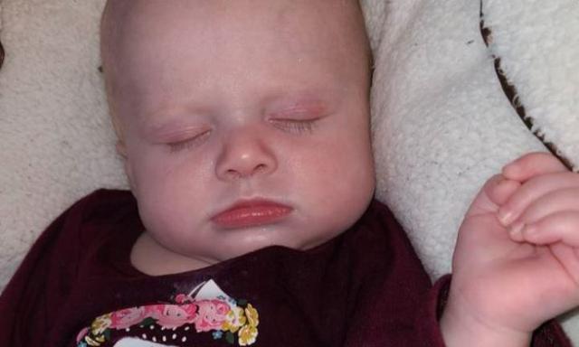 Một em bé 4 tháng tuổi tử vong sau khi bị một chú chó nằm đè lên người trong lúc ngủ, dù bố ở ngay bên cạnh - Ảnh 1.