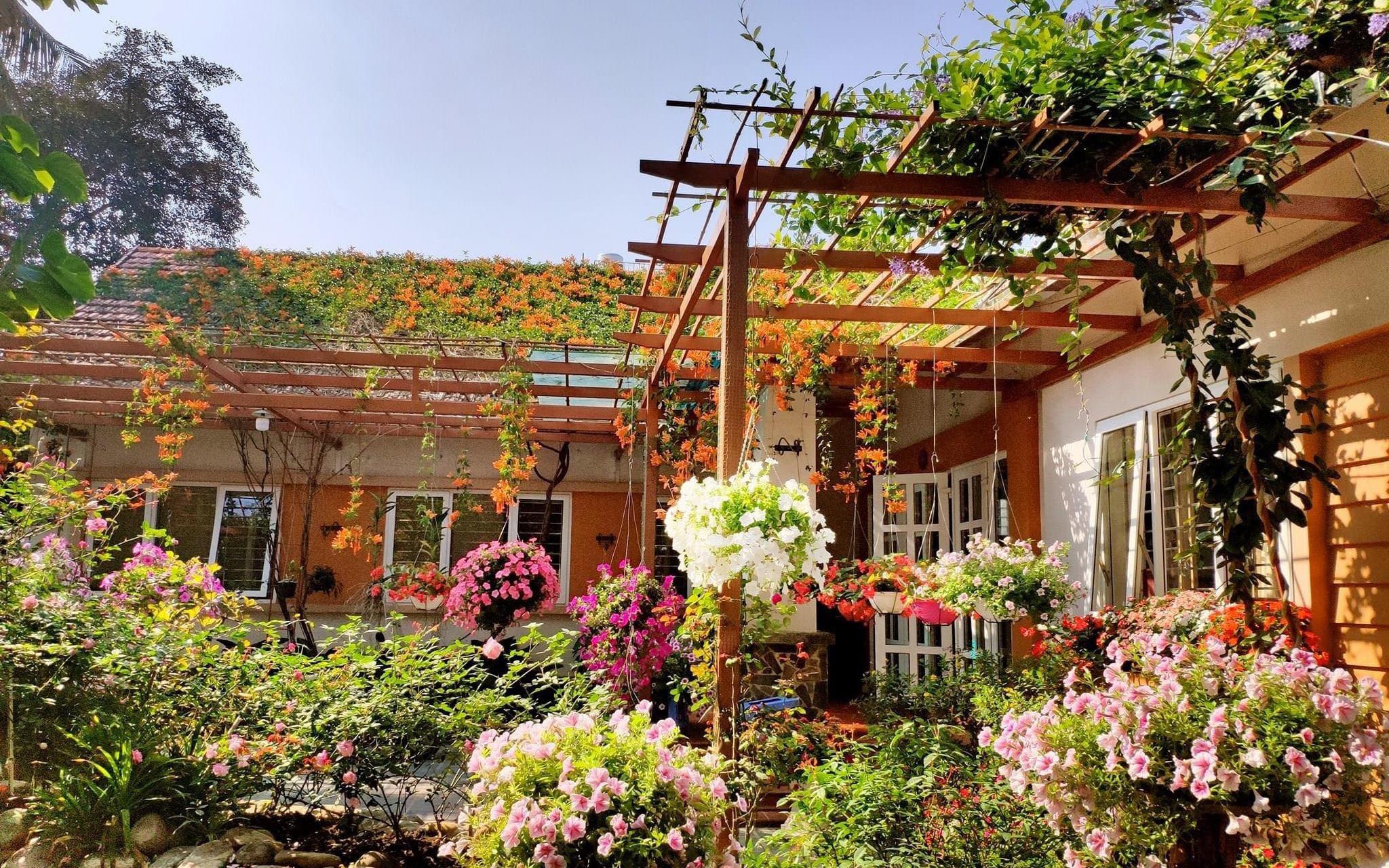 Căn nhà vườn vạn người mơ ước của người chồng chăm chỉ cuốc đất cho vợ phủ kín hoa ở TP. Điện Biên