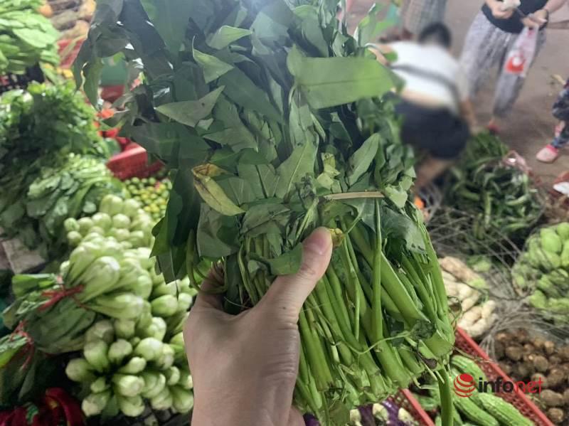 Hà Nội: Rau xanh tăng giá 'chóng mặt', đi chợ hoa mắt vì giá - Ảnh 2.