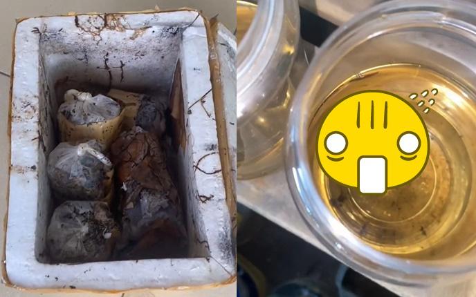 """Gửi thùng cá cảnh bán cho khách nhưng bị kẹt lại 3 tháng, tưởng """"mất trắng"""" nhưng kết quả không ngờ"""