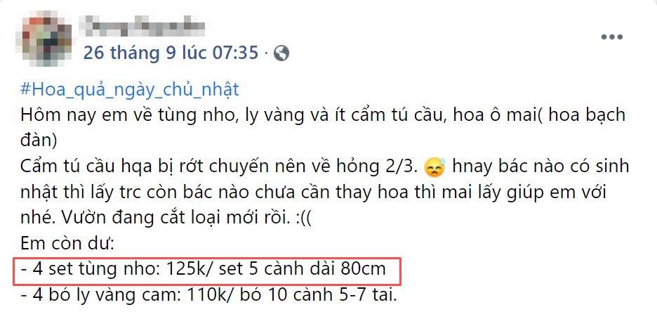 """Mẹ đảm Hà Nội """"mách nhỏ"""" loại cành cắm mang Thu vào nhà, giá 125k/5 cành đặt góc nào cũng ra bức ảnh như ở trời Tây - Ảnh 8."""