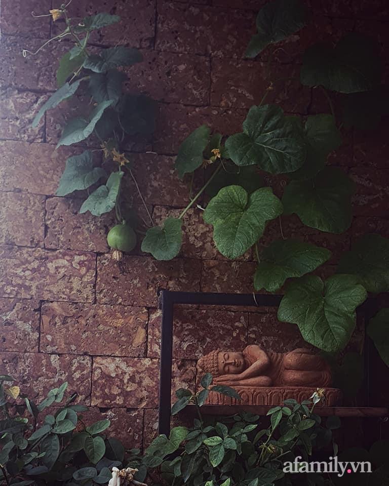 """Ban công 3m² """"biến hình"""" thành khu vườn rực rỡ chỉ trong 1 tuần nhờ """"gu"""" cực chất của người phụ nữ Hà Nội - Ảnh 13."""