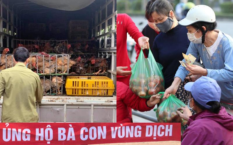 """Hà Nội: Tấp nập địa chỉ online rao bán thịt trứng với giá """"giải cứu"""" cùng hàng loạt mặt hàng nông sản, hoa quả và hoa tươi"""