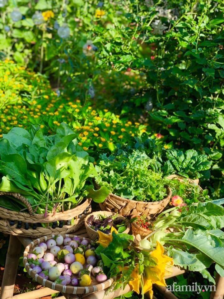 Khu vườn 70m² xanh mát rau quả quanh năm nhờ mẹ đảm mát tay ở Huế - Ảnh 15.