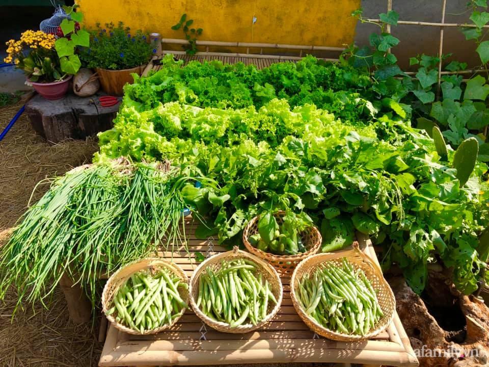 Khu vườn 70m² xanh mát rau quả quanh năm nhờ mẹ đảm mát tay ở Huế - Ảnh 1.