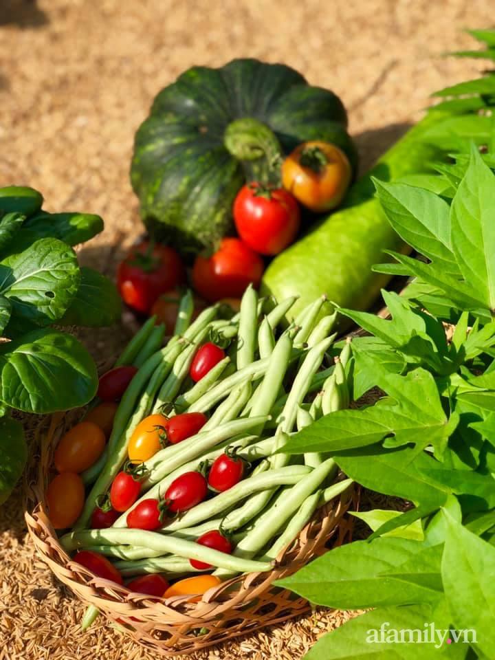 Khu vườn 70m² xanh mát rau quả quanh năm nhờ mẹ đảm mát tay ở Huế - Ảnh 14.