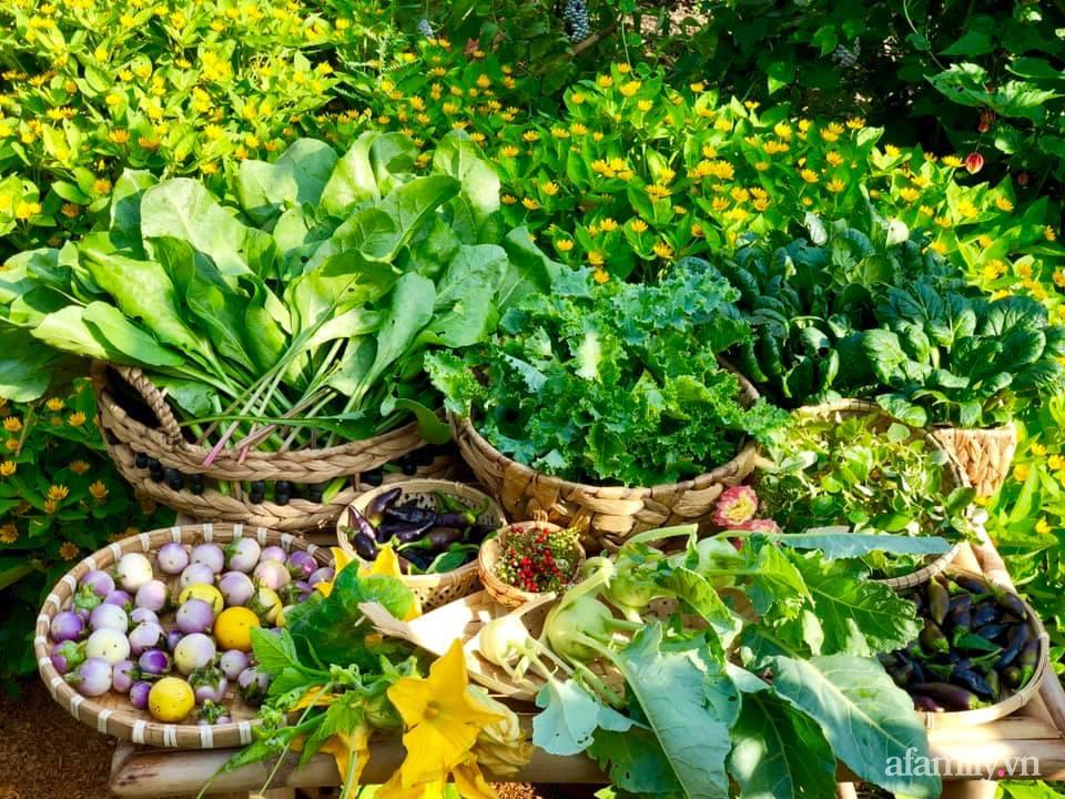 Khu vườn 70m² xanh mát rau quả quanh năm nhờ mẹ đảm mát tay ở Huế - Ảnh 2.