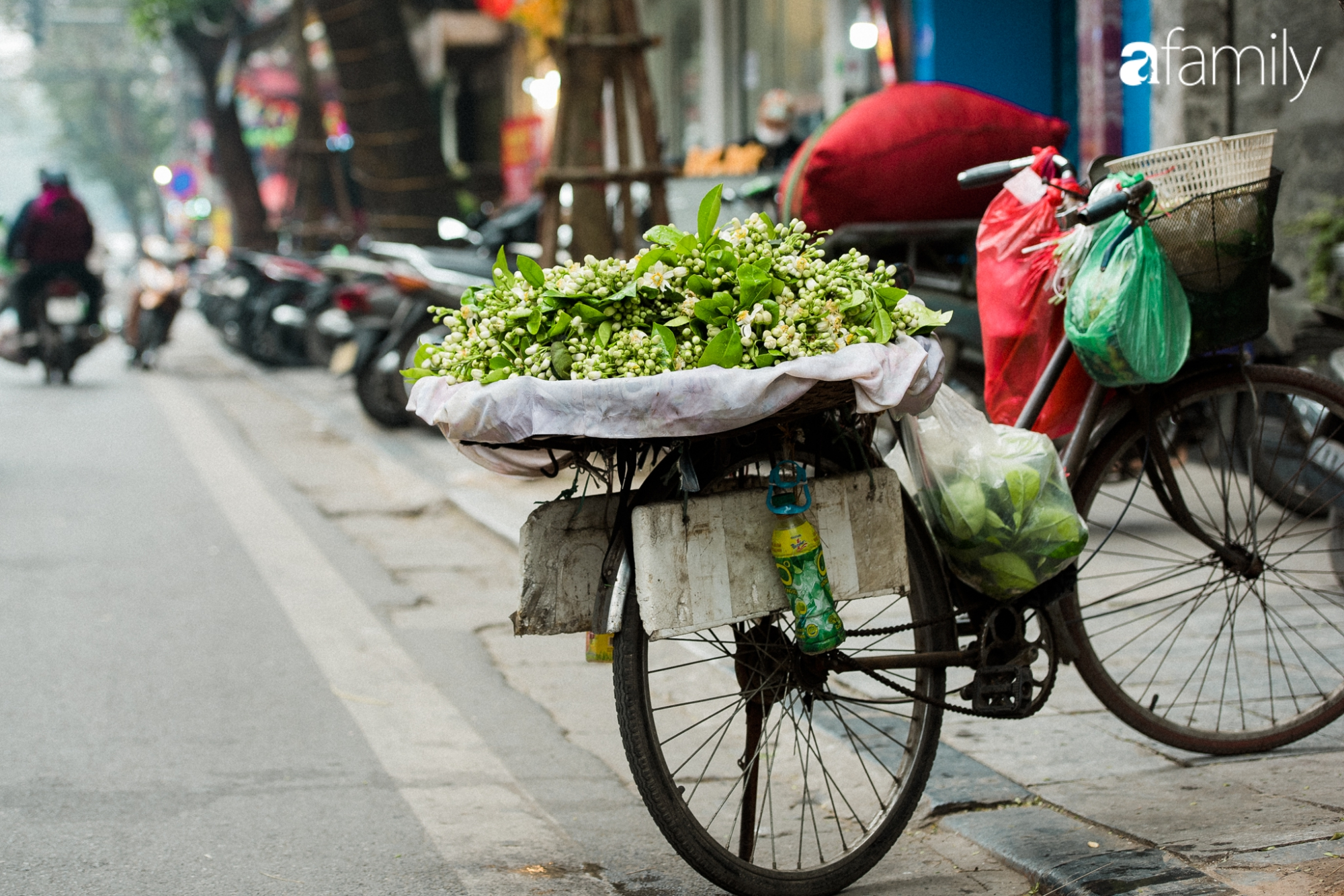 """Dân Hà Nội """"rộ mốt"""" mua hoa bưởi cúng Rằm tháng Giêng giá chỉ từ 200.000/kg và mẹo lựa hoa đẹp cả năm tài lộc, hanh thông - Ảnh 2."""