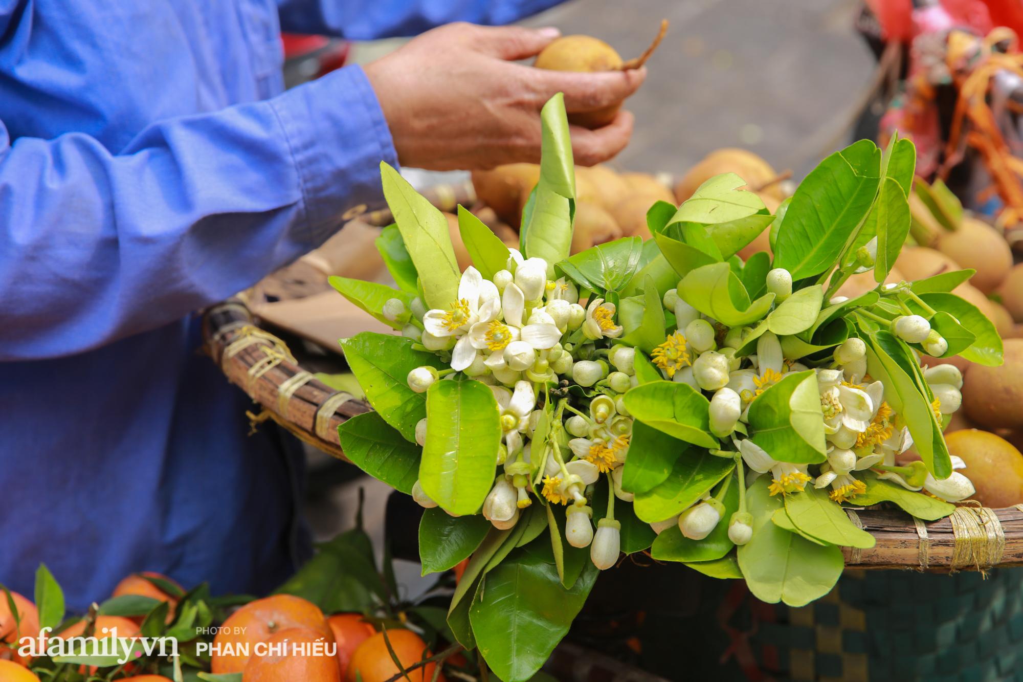 Hàng bưởi Diễn da vàng óng có từng búi hoa tươi trở thành món hàng siêu độc trên chợ nhà giàu Hà Nội, tận 100k/quả, bà chủ thu cả chục triệu mỗi ngày!  - Ảnh 8.