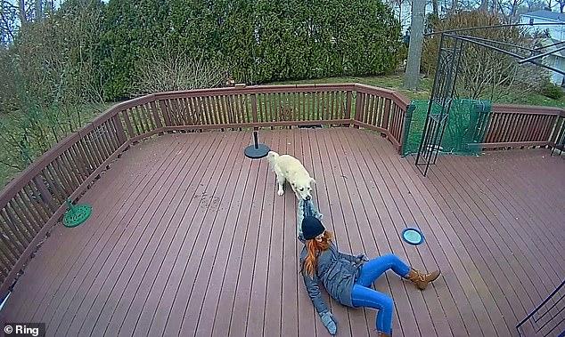 Khoảnh khắc chú chó giằng co áo kéo lê làm ngạt thở cô gái, ngỡ tai nạn đẫm máu kinh hoàng mà sự thật không như tất cả nghĩ - Ảnh 4.