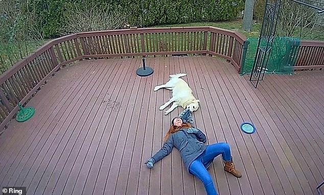 Khoảnh khắc chú chó giằng co áo kéo lê làm ngạt thở cô gái, ngỡ tai nạn đẫm máu kinh hoàng mà sự thật không như tất cả nghĩ - Ảnh 5.