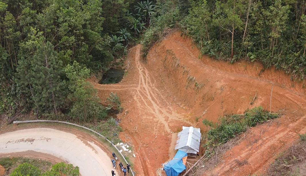 Trồng hàng ngàn cây xanh trên đất Quảng Nam để bảo vệ môi trường - Ảnh 1.