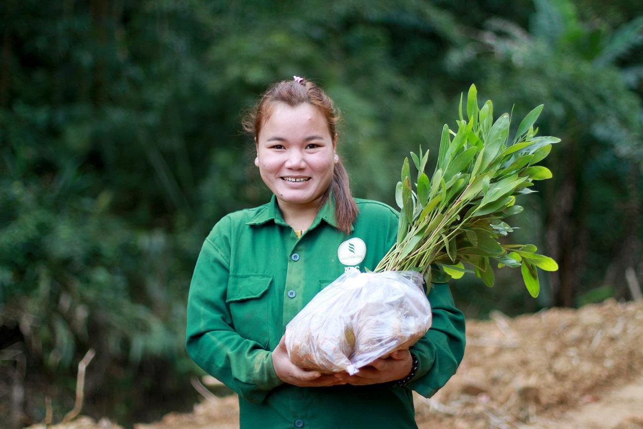 Trồng hàng ngàn cây xanh trên đất Quảng Nam để bảo vệ môi trường - Ảnh 3.