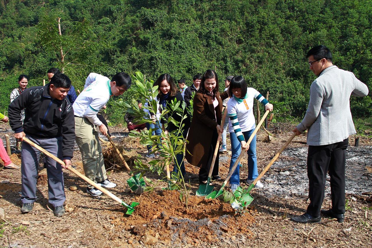Trồng hàng ngàn cây xanh trên đất Quảng Nam để bảo vệ môi trường - Ảnh 5.