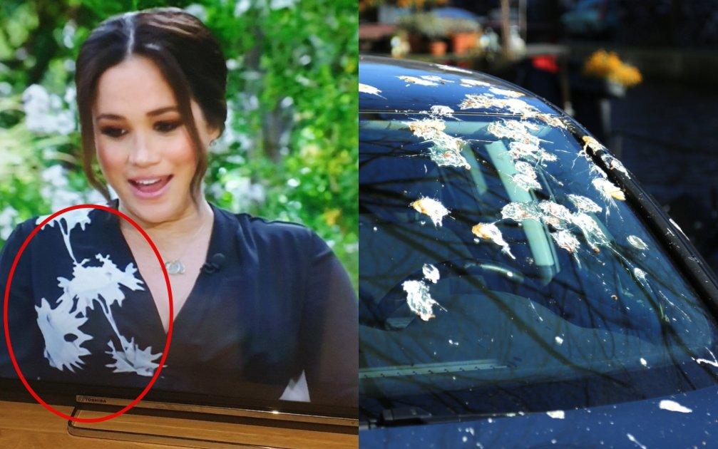 """Bóc giá chiếc váy bị chê """"dính phân chim"""" của Meghan Markle: Hàng hiệu giá 108 triệu, """"hack dáng"""" cực đỉnh cho bà bầu! - Ảnh 3."""