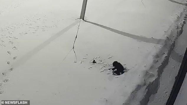 Bé trai 5 tuổi rơi từ tầng 12 xuống đất nằm bất động lập tức, chỉ 5 giây sau điều kỳ diệu đã xảy ra khiến mọi người không tin vào mắt mình - Ảnh 4.