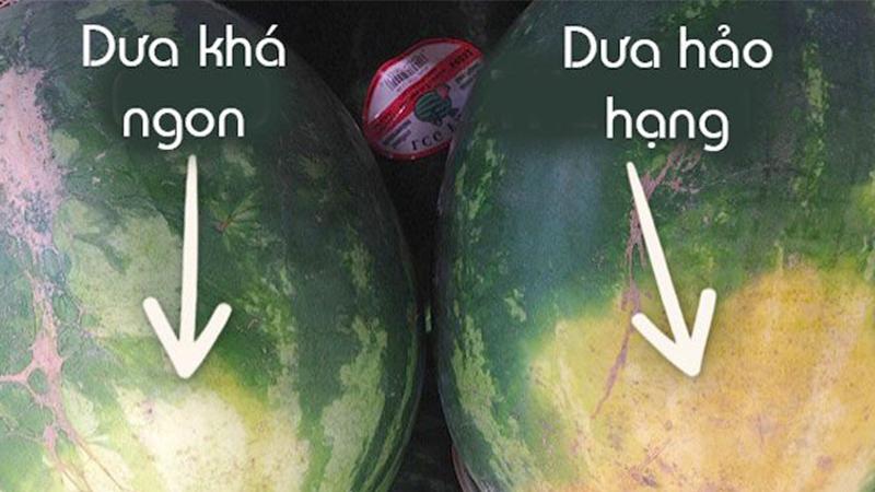 Cách chọn các loại hoa quả hè chuẩn, 10/10 quả đều ngon - Ảnh 4.